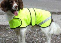 SAFETY: Hi Vis Waterproof Dog Coats Reviews 10