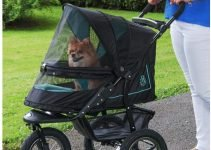 Best Dog Stroller: 5 Reasons Why Dog Owners have turned to Wheels 7