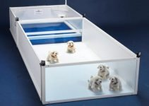 Best 10 Affordable Dog Whelping Box and Accessories For Home
