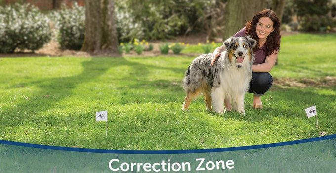 Best Invisible Wireless Dog Fence Buyers Guide 2019 27
