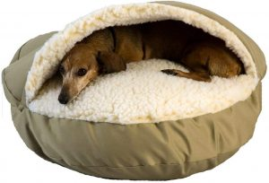 SNOOZER DOG CAVE
