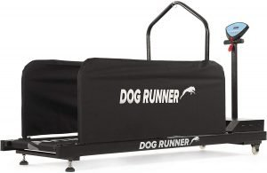 Dog Treadmills to Regularly Exercise Your Dog From Home