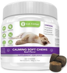 CBD oil for Dogs for Anxiety, Pain Relief and Calming Your Number 1