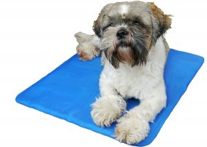 Dog Cooling Mats for Self Cooling in Hot Temperatures