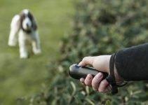 6 Best Ultrasonic Handheld Dog Whistle: Superb Bark Control