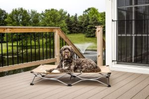 Carslon Pet Folding Bed